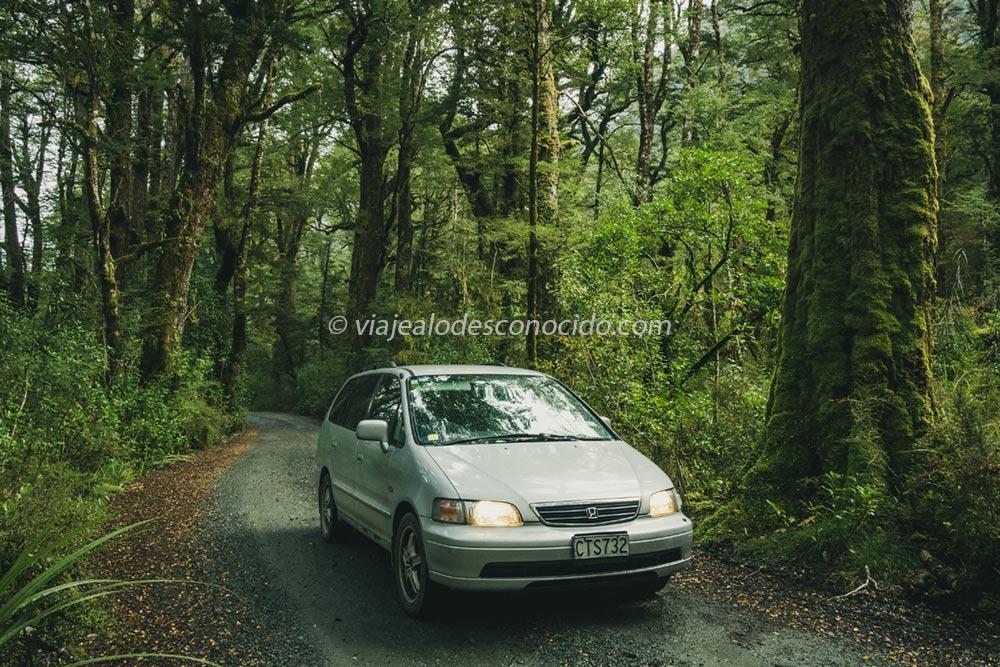 viaje Nueva Zelanda roadtrip